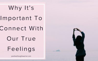 Spirit Translator | It's Important To Connect To True Feelings